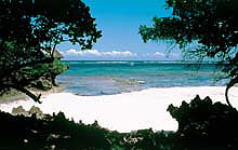 Kenya Twin Centre Holidays - Relax on a white powder beach on Africa Indian Ocean